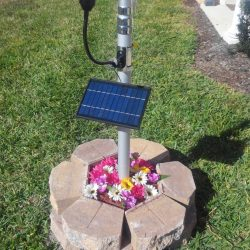 CREE Solar Flagpole Light