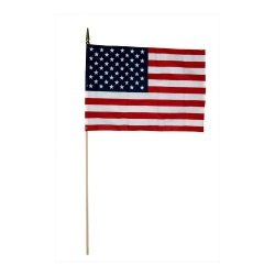 US Stick Flag